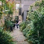 1PLUS Lot de 2 supports pour plantes grimpantes en métal. Hauteur :80,5et 100cm, dans différentscouleurs et designs–colonne pour rosier grimpant anti-corrosion. Allgold Noir de la marque 1PLUS image 4 produit