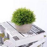 2 PCS YQing Plantes Succulentes Artificielles Vertes Pot Plantes Grasses Home Garden Table Déco de la marque YQing image 4 produit