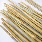 25x Tuteurs / Tiges de bambou naturel pour plantes 6/8mm (120cm) de la marque Plant It image 3 produit