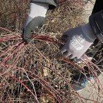 3 Paires Gants de travail Nitras 8800 EN 388 Ajustement flexible - Gants de mécanicien Gants de montage Gants de protection Gants de jardinage Gants multi-fonctions (L) de la marque Nitras image 4 produit
