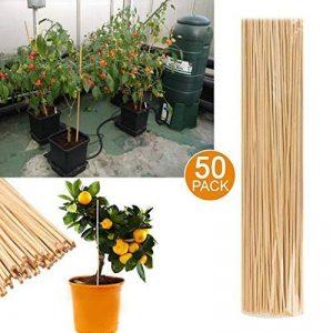 50tuteurs de jardin en bambou, tuteur en bois pour la croissance des plantes, fleurs de jardin - décoration d'intérieur et d'extérieur de la marque Prime Qualität (Everything You Need) image 0 produit