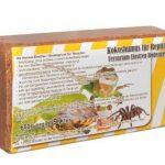 6 x 650 grammes de litière en noix de coco fond pour terrarium des reptiles fond en noix de coco humus de noix de coco briques à la noix de coco fibres à noix de coco briques en noix de coco -fin- de la marque Grosshandel & Direktimport Thekla Fuhrmann image 3 produit