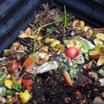 accélérateur de compost bio TOP 9 image 4 produit