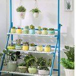 Bleu 3 Niveaux Plante Échelle Bambou Multifonctionnel Plante Fleur Pot Stands Intérieur Extérieur ( taille : 100*40*96CM ) de la marque Fleur étagère image 1 produit
