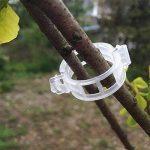 BulzEU 200pcs Jardin plantes Clips Fleur Clips de Fixation- Clips de Support Idéal pour sécuriser les plantes au Plante Prend en Charge–Blanc de la marque BulzEU image 4 produit