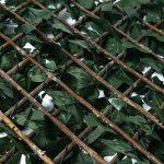 Catral Treillis extensible avec feuilles et bourgeons 0.50x1.50 vert de la marque Catral image 1 produit