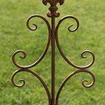 CLP Tige de rang pour plantes romantique BENITA en fer, hauteur: 148,5 cm, idéal pour les plantes grimpantes, marron antique de la marque CLP image 4 produit