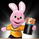 Duracell Ultra Power Piles Alcalines type D, Lot de 4 de la marque Duracell image 1 produit