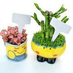 Etiquettes Plantes, Ishua 100 pcs 6 x10 cm Plante en plastique type T balises marqueurs Nursery Jardin étiquettes Gris (Blanc) de la marque Ishua image 2 produit