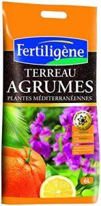 FERTILIGENE Terreau Agrumes et Plantes Méditerranéennes 6L de la marque FERTILIGENE image 0 produit