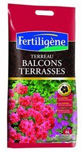 Fertiligene Terreau Balcons et Terrasses 6 L de la marque FERTILIGENE image 0 produit