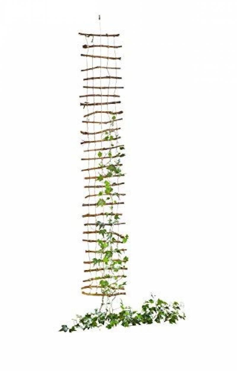 Fabriquer Treillis Bois Pour Plantes Grimpantes treillis plantes grimpantes pour 2020 -> le comparatif