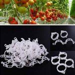 G2PLUS 100pcs Jardin plantes Clips Fleur Clip Idéal pour sécuriser les plantes au Plante Prend en charge–Blanc de la marque G2PLUS image 1 produit