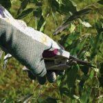 gants cogex TOP 2 image 1 produit