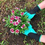 Gants de jardin de 2 paires, les deux griffes de main Gants de jardinage, rapides et faciles à creuser et usine, sans danger pour la taille rose pour des gants de femmes et d'hommes de la marque Coopache image 2 produit