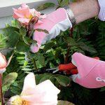 gants de jardinage cuir TOP 5 image 3 produit