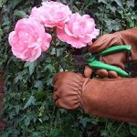 gants de jardinage cuir TOP 6 image 2 produit