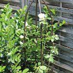 GardenMate® Obélisque Bronze massif Ø 35cm Hauteur 190cm acier (Revêtement par poudre de la marque GardenMate image 1 produit