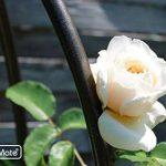 GardenMate® Obélisque Bronze massif Ø 35cm Hauteur 190cm acier (Revêtement par poudre de la marque GardenMate image 4 produit