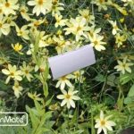 GardenMate® Poster Lot de 25 marque plantes en acier galvanisé métal zinc 30cm de la marque GardenMate® image 2 produit