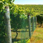 Grillage pour jardin casa pura® clôture vert | tailles au choix | maille carré de 12,7mm | résistant aux intempéries | bricolage, 50cmx10m de la marque casa pura image 3 produit