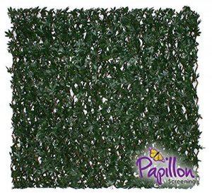 Haie Artificielle Érable Vert sur Treillage Extensible 1 x 2m - Papillon ™ de la marque Primrose image 0 produit