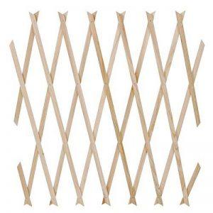 Jago - Treillage Treillis en Bois Support Plante Grimpantes (Quantité au Choix) de la marque Jago image 0 produit