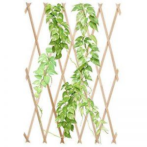 Jago - Treillis de Jardin Extensible en Bois Support Plantes Grimpantes (Quantité au Choix) de la marque Jago image 0 produit