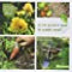 Je ne jardine que le week-end ! : Techniques pour jardiner zen... et efficace ! de la marque image 0 produit