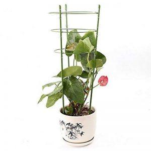 JYCRA support de plantes grimpantes, 3pièces Bagues de support de plante Mini cages de treillage support pour plantes de jardin pour plantes grimpantes et vigne, Green, 60cm/24inch de la marque JYCRA image 0 produit