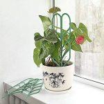 JYCRA support pour plantes de jardin Treillis, DIY Pot de jardin Mini Treillage pour plantes en pleine Croissance support–Forme de feuille, Vert 3Set/9pcs Green de la marque JYCRA image 4 produit