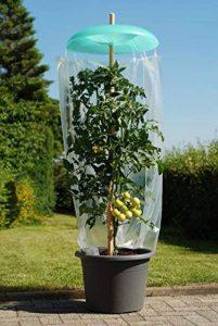 Kit de démarrage tomates Chapeau avec 3chapeaux. 3tuyaux et 3supports d'un film Hottes avec JE 10 de la marque KHW image 0 produit