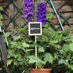 La cordeline CJNBC1 3 Etiquettes Carrées à Planter 46 cm de la marque La cordeline image 1 produit