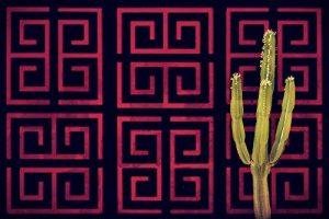 Large décoration de jardin privé–durable et superbe. Maze de la marque Screen With Envy image 0 produit