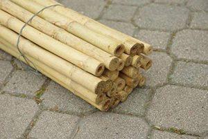 Lot de 25 cannes de bambou pour potager, 210 cm de la marque FERRITALIA image 0 produit