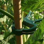Lot de 60clips de support pour plantes de jardin en plastique Clips Clips de vigne Plante pour soutenir tiges développer Droit (30Grande + 30Petite de la marque KINGLAKE image 1 produit