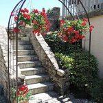 Louis Moulin 3006 Arche pour Plantes Grimpantes Métal Fer Vieilli 180 x 50 x 250 cm de la marque Louis Moulin image 2 produit