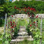 Louis Moulin Arche tube carré pour Plante grimpante Fer vieilli 180 x 50 x 250 cm 3026 de la marque Louis Moulin image 2 produit