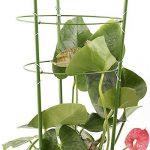 """lulalula support pour plantes Lot de 2bagues, jardin Treillis support pour cage à tomates et plantes en acier inoxydable support pour l'escalade Fleurs Légumes Fruits 24"""" H Green de la marque lulalula image 4 produit"""