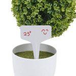 Marqueurs Etiquettes Plante de Pépinière Arbustes Semis Bouture Type T Jardin Kit 100pcs 10*6cm Gris de la marque Générique image 4 produit