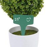 Marqueurs Etiquettes Plante de Pépinière Arbustes Semis Bouture Type T Jardin Kit 100pcs 10*6cm Vert de la marque Générique image 4 produit