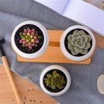 Mlec Tech Simple Créatif Blanc Plante Succulente Fleur Pot Titulaire En Céramique Moderne Décoratif Oblate Fleur Pot et Trois-couche Bambou Plateau Pot Ensemble Sans Plante de la marque Mlec Tech image 2 produit