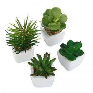 niceEshop(TM) 4 Pcs Mini Plantes Succulentes Artificielles avec Pot en Céramique (Vert) de la marque niceEshop image 0 produit