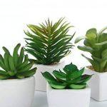 niceEshop(TM) 4 Pcs Mini Plantes Succulentes Artificielles avec Pot en Céramique (Vert) de la marque niceEshop image 1 produit