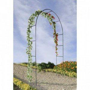 OSE Arche de jardin pour plantes grimpantes - Vert de la marque OSE image 0 produit