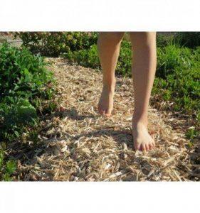 Paillage Bois +/- 1M² - Naturel - Livraison Gratuite de la marque MPO image 0 produit