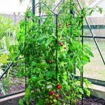panneau plante grimpante TOP 10 image 1 produit