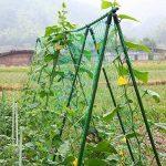 panneau plante grimpante TOP 11 image 1 produit