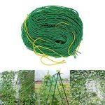 panneau plante grimpante TOP 11 image 4 produit