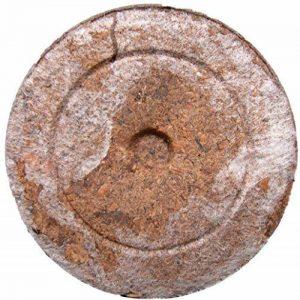 Pastilles de Tourbes Jiffy x10 - Peat Pellets de la marque La Lettre S Shop image 0 produit